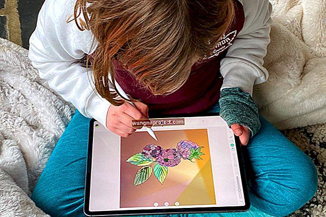 Jak określić modele iPada