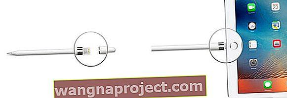 wangnaproject com